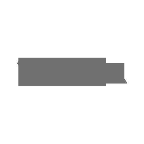 galeria wislanka logo